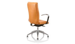 United Chair - Eqüs - Equs_EQ16_E3_SPL_SYN_CP_APC_C_Back_Angle